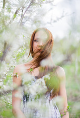 Red-haired pretty lady in spring orchard