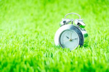 Silver alarm clock on green grass