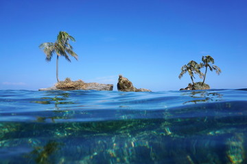 Islets with coconut tree viewed from sea surface