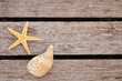 starfish and shell on the pier - 81397266