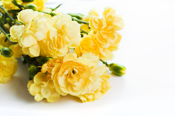 Yellow soft spring flowers bouquet on white background