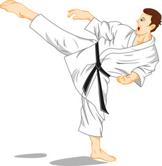 master of karate (martial art)