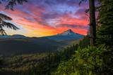 Beautiful Vista of Mount Hood in Oregon, USA - 81400631