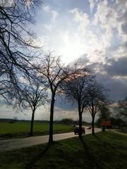 Strasse im Sonnenuntergang