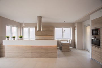 Beige kitchen interior