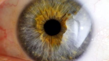 Extreme close up human eye iris.