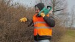Landscape worker with bush cutter near bush in the park