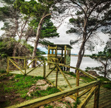 wooden birdwatching cabin by the water poster