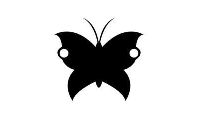 butterfly 26