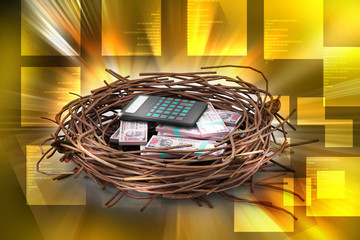Dollar and calculator protected in nest
