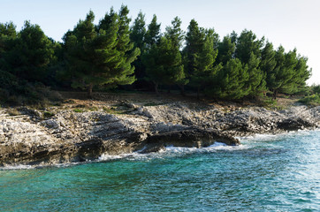 Bay Plovanije of Adriatic sea on Cape Kamenjak, Istria, Croatia