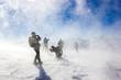 Bufera e tormenta di neve con persone - 81412068