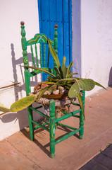 Andalusian scene