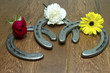 Triple Crown Flowers on Horseshoes - 81413242