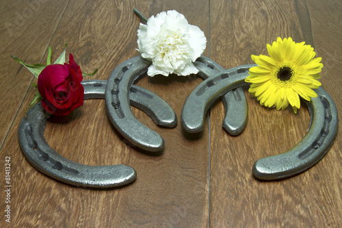 Fotobehang Paardensport Triple Crown Flowers on Horseshoes