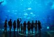 Leinwanddruck Bild - Aquarium in Atlantis Hotel, with silhouettes of people
