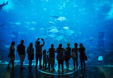 Aquarium in Atlantis Hotel, with silhouettes of people