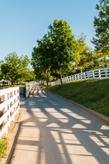 Country road surrounded the horse farms with evening fence shado
