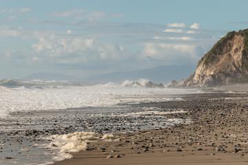 sea foam on sandy beach on West Coast in New Zealand