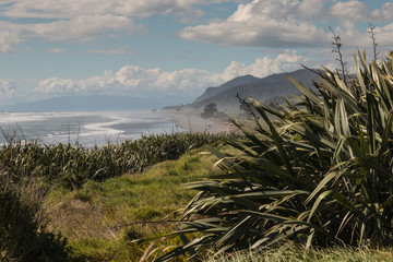 West Coast of South Island in New Zealand