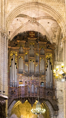 Organ with pipes
