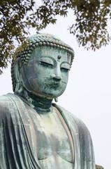 The great Buddha (Daibutsu) in Kamakura , Japan