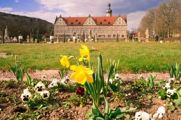 Schloss Weikersheim mit Osterglocken