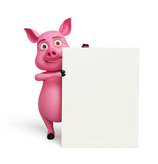 3D Pig with white board
