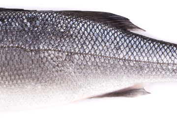 Close up of seabass scale texture.