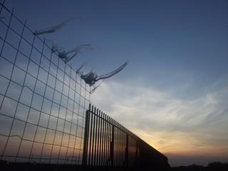 Tramonto al vento