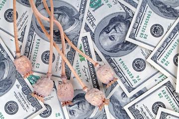 Poppy and money