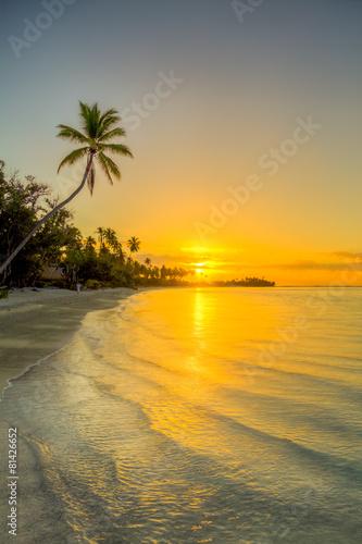Tuinposter Strand isole caraibiche di polinesia con palme e tramonto
