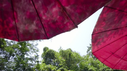 Colorful umbrella in vacation area natural view,looking up angle