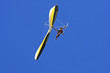 Hang Glider - 81430607