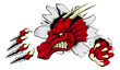 Red dragon mascot breaking through wall - 81430663