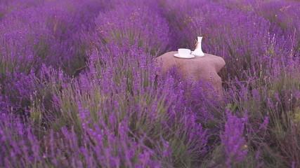Harvested lavender flowers.