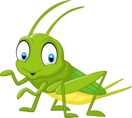 Cartoon funny cricket