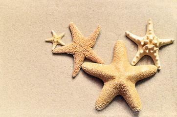 Summer, beach and starfish