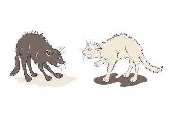 Illustration - black cat against white cat