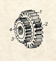 Spur wheel