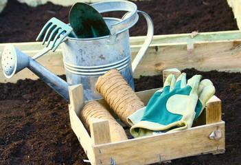 outils et plantation dans carré potager
