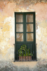 Typical Colonial Window