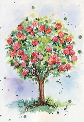 watercolor illustration of tree with roses