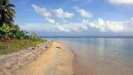 Starfish beach, archipelago Bocas del Toro, Panama