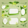 Set of floral frames