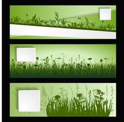 strip of grass