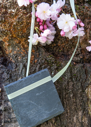 Papiers peints Cerises Blumendekoration