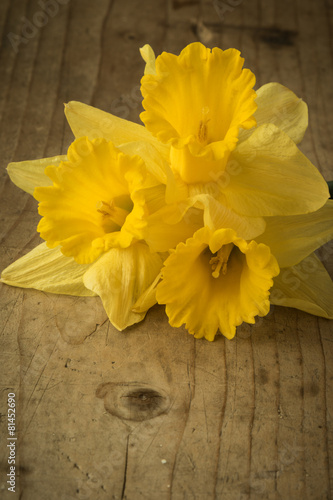 Papiers peints Narcisse narcissus bouquet on wooden table
