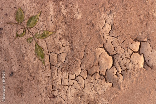 Dry soil closeup before rain - 81454244
