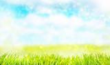 Fototapety grüne landschaft